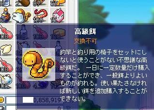 Maple1023.jpg
