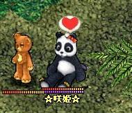 パンダ姫☆彡