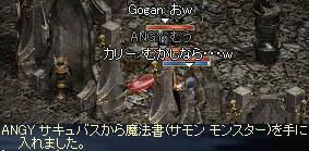 07031f2.jpg