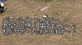 20050217003045.jpg