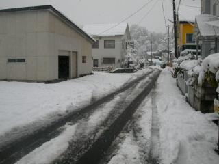 yuki081120-1.jpg