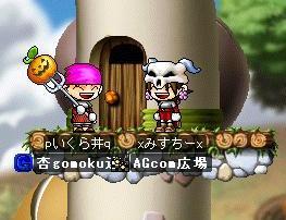 agcomresult_20080524.jpg