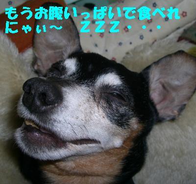 20070101030912.jpg