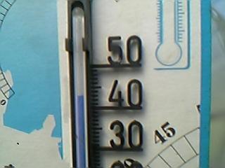 07/4/29ハウス内温度