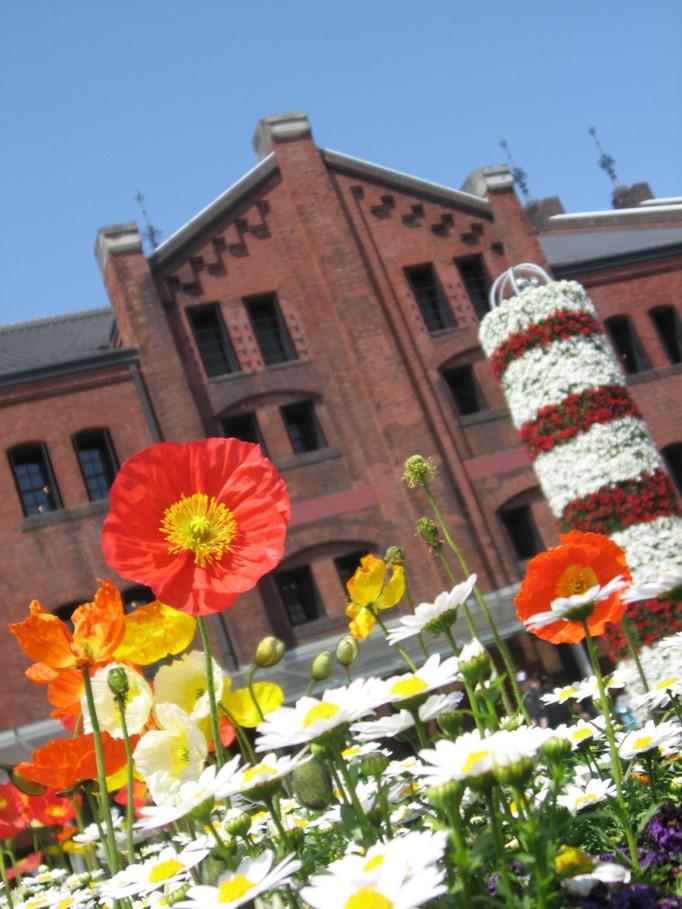 横浜赤レンガ倉庫(春)