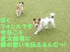 CIMG5751.jpg