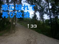CIMG5973.jpg
