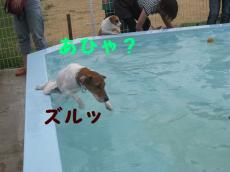 IMG_0202.jpg