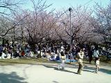 駿府公園内