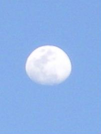 20070228.jpg