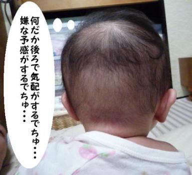 maika0831.jpg