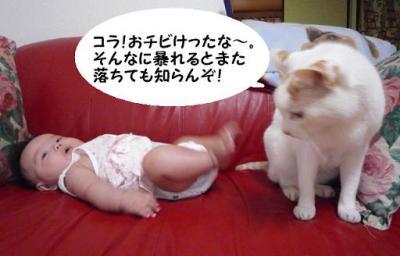 milk3.jpg