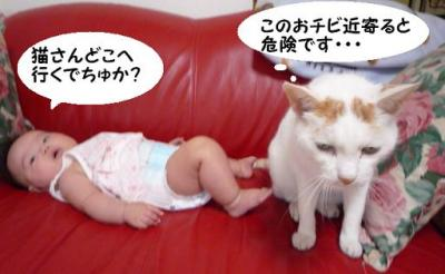milk4.jpg