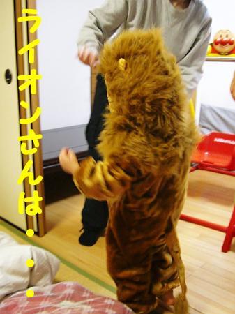 ライオンさんは