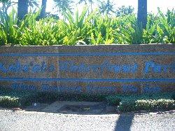 ハワイ0036