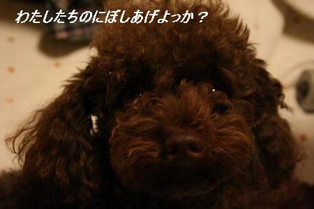 IMG_9617.jpg