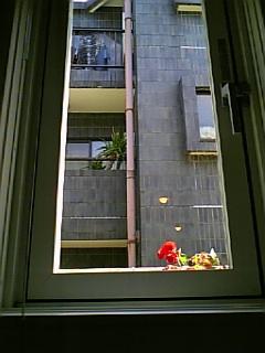 20060520135116
