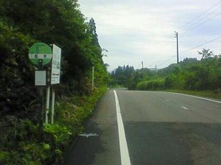 NEC_0510b.jpg