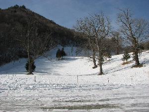 20070113a.jpg
