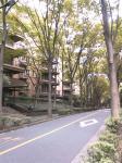 081005-kentei1.jpg