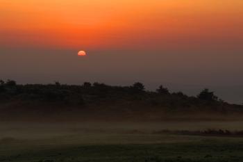 霧流れる高原