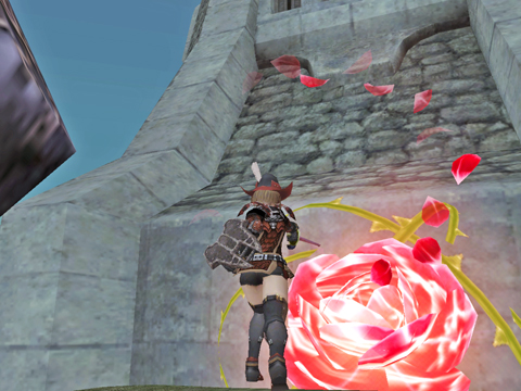 壁に薔薇を咲かせましょう!壁の花・・・or2