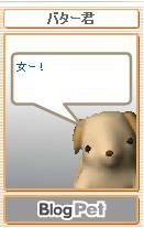 20050510204831.jpg