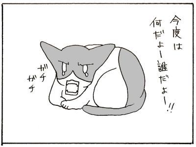 105-8.jpg