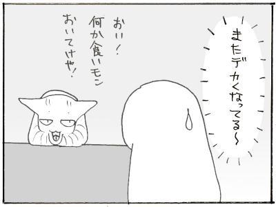 108-7.jpg