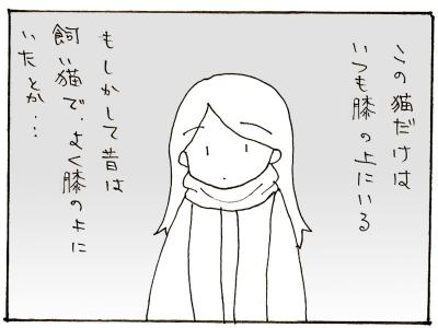 109-5.jpg