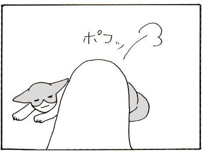 112-8.jpg