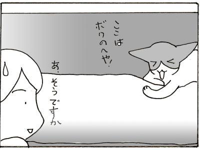 113-8.jpg