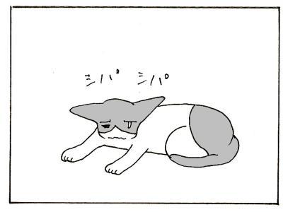 115-2.jpg
