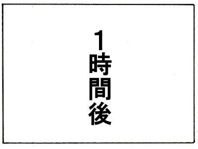116-11.jpg