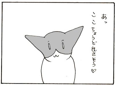 125-4.jpg