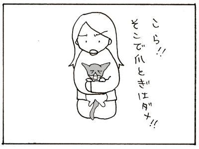 125-6.jpg