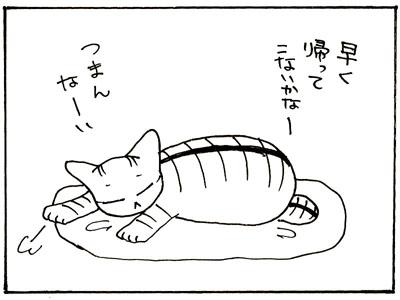 26-1.jpg