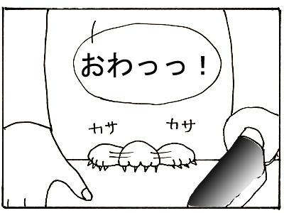 26-5.jpg