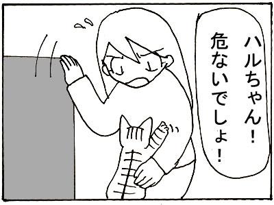 26-7.jpg