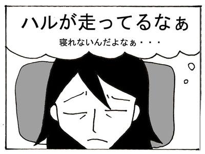 27-2.jpg