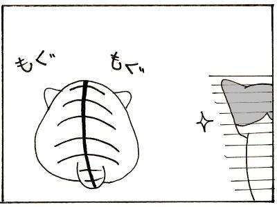 37-6.jpg