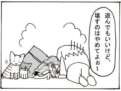 43-9.jpg