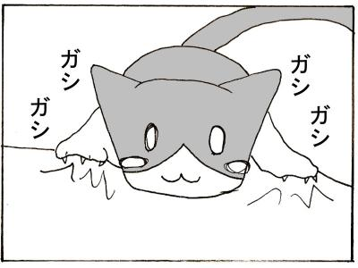 50-6.jpg