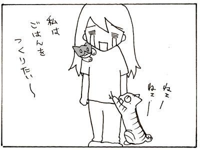 53-8.jpg