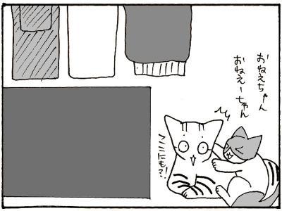 63-7.jpg