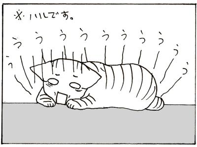 71-6.jpg