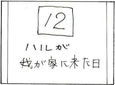 74-17.jpg