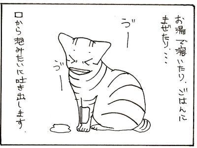 77-6.jpg