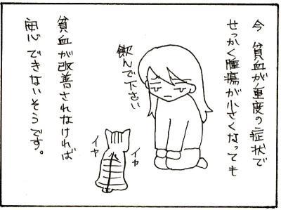77-7.jpg