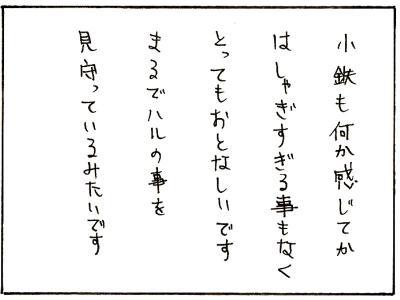 86-20.jpg